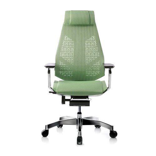 Genidia green ergonomic chair
