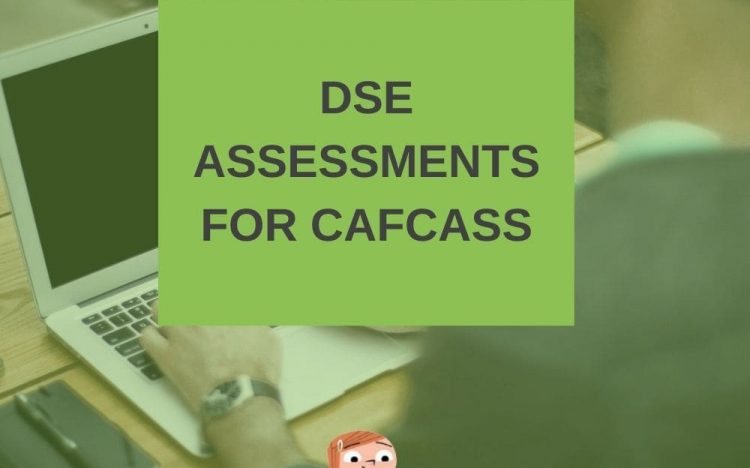 dse assessments for cafcass